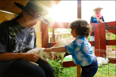 kids-party-petting-zoo-los-angeles